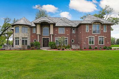 Burr Ridge Single Family Home New: 9101 South Garfield Avenue