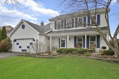 Fox River Grove Single Family Home For Sale: 500 Lexington Avenue