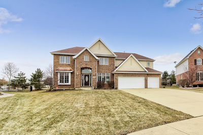 Lockport Single Family Home For Sale: 16744 West Huntington Drive