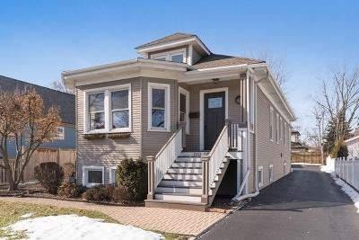 Elmhurst Single Family Home New: 220 North Oak Street
