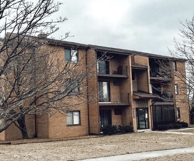 Orland Park Condo/Townhouse For Sale: 9935 El Cameno Real Drive #2A