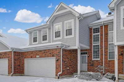Burr Ridge Condo/Townhouse New: 7242 Chestnut Hills Drive