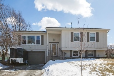 Lake Zurich Single Family Home For Sale: 639 Surryse Road