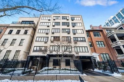 Chicago IL Condo/Townhouse New: $225,000
