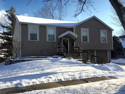 Naperville Single Family Home New: 364 Cedarbrook Road