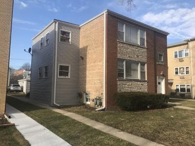 Skokie Multi Family Home New: 8228 North Knox Street