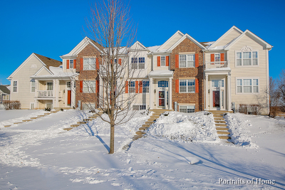 Plainfield Condo/Townhouse New: 24735 Patriot Square Drive South
