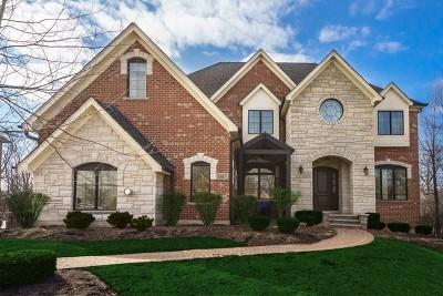 Burr Ridge IL Single Family Home New: $875,000