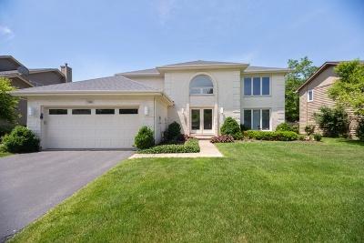 Buffalo Grove Single Family Home For Sale: 746 Horatio Boulevard