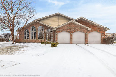 Tinley Park IL Single Family Home New: $357,000