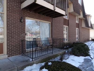 Oak Lawn Condo/Townhouse New: 5721 West 103rd Street #102