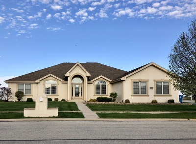 Bourbonnais Single Family Home For Sale: 1829 Willow Brook Drive