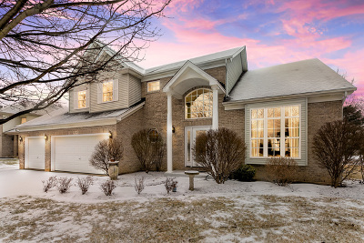 Naperville Single Family Home New: 5340 Sand Lily Drive
