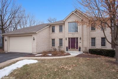 Bolingbrook Single Family Home New: 3 Burr Oaks Court