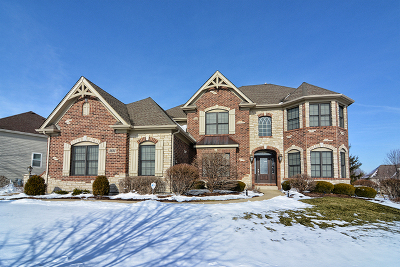 Elgin IL Single Family Home New: $599,900