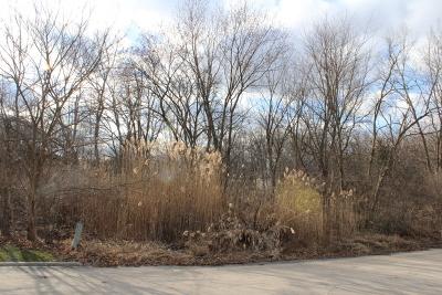 Orland Park Residential Lots & Land For Sale: 2 Old Tamarack Lane