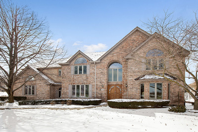 Orland Park Single Family Home New: 11301 Poplar Creek Lane