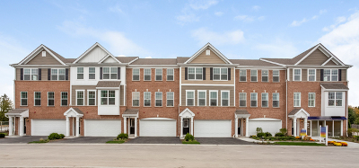 Wheeling Condo/Townhouse For Sale: 54 Grey Wolf Drive