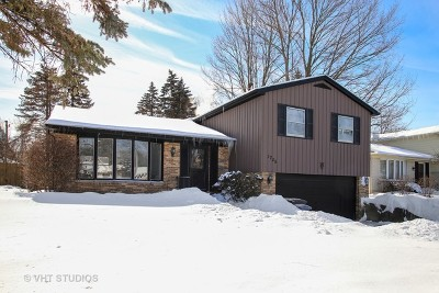 Mount Prospect Single Family Home For Sale: 1755 East Camp McDonald Road