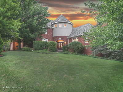 Orland Park Single Family Home For Sale: 11938 Timber Edge Drive