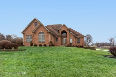 McHenry Single Family Home For Sale: 6513 Sweet Bay Drive