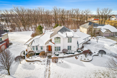 Mokena Single Family Home For Sale: 20958 Tall Grass Drive