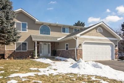 Lake Zurich Single Family Home For Sale: 23445 North Garden Lane