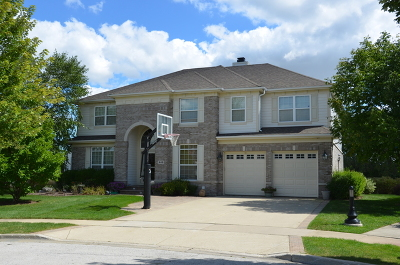 Schaumburg Single Family Home For Sale: 449 Birmingham Lane