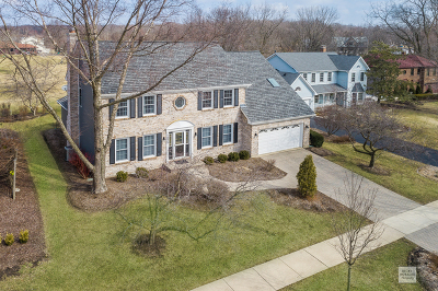 Naperville IL Single Family Home Price Change: $915,000