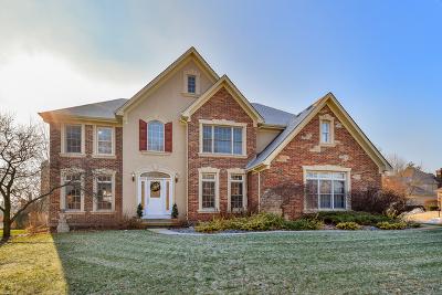 Glen Ellyn Single Family Home For Sale: 901 Sheehan Avenue