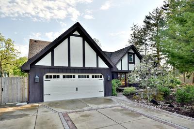 Elmhurst Single Family Home For Sale: 15w103 Lexington Street