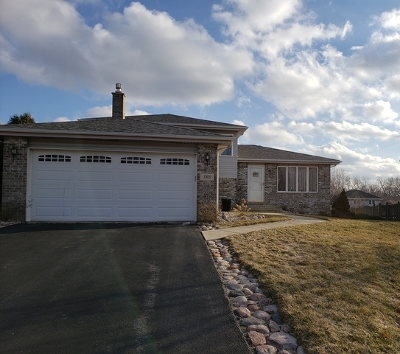 Lockport Single Family Home For Sale: 1313 East Collingwood Drive
