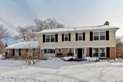 Lake Forest Single Family Home For Sale: 1055 Old Barn Lane