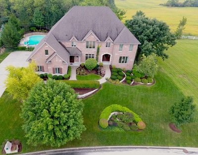 Orland Park Single Family Home For Sale: 10931 Royal Oaks Lane