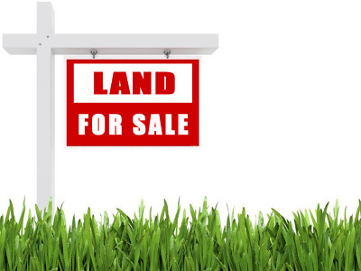 Braidwood Residential Lots & Land For Sale: 0000 North Division Street