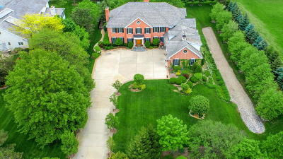 Burr Ridge Single Family Home For Sale: 6333 South County Line Road