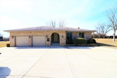 Orland Park Single Family Home For Sale: 11600 139th Street