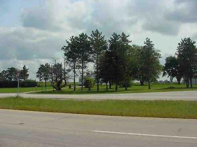 Elwood Residential Lots & Land For Sale: 26035 South Route 53