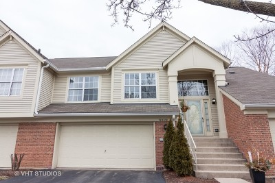 Warrenville Condo/Townhouse For Sale: 30w030 Willow Lane