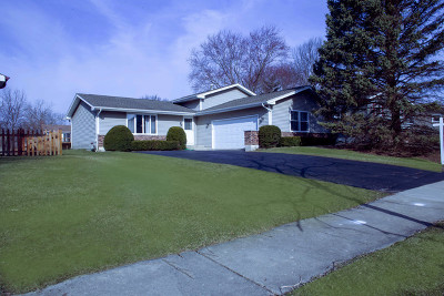 Algonquin Single Family Home For Sale: 725 Birch Street