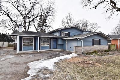 Lisle Single Family Home For Sale: 603 Maple Avenue