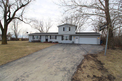 Kankakee Single Family Home For Sale: 136 South 7000 W Road