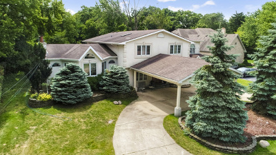 Palatine Single Family Home For Sale: 5155 Old Plum Grove Road