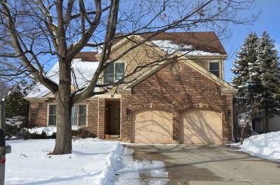 Buffalo Grove Single Family Home For Sale: 44 Chestnut Terrace