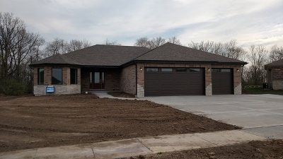 Channahon Single Family Home For Sale: 27249 Red Wing Lane