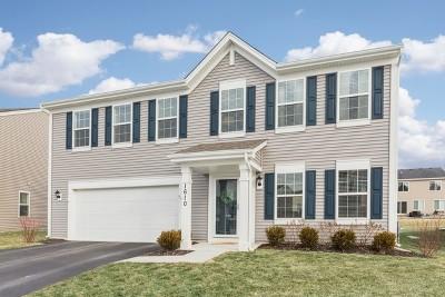 Pingree Grove Single Family Home For Sale: 1610 Lake Bluff Lane