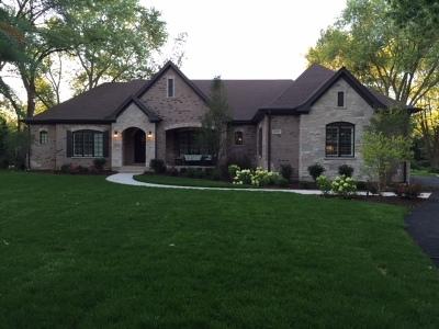 Vernon Hills Single Family Home For Sale: 1741 Lake Charles Drive