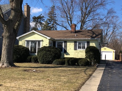 Lombard Single Family Home For Sale: 1038 East Madison Street