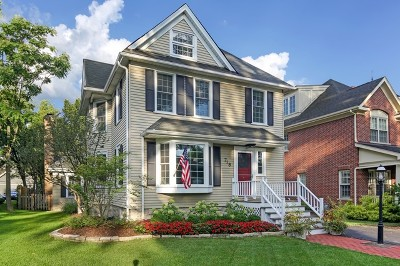 Hinsdale Single Family Home For Sale: 718 South Lincoln Street