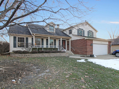Palatine Single Family Home For Sale: 1085 West Hunting Drive